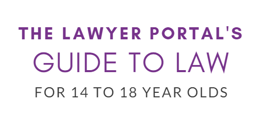 A banner promoting The Lawyer Portal