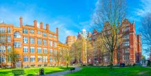 LLM university
